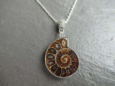 Real Ammonite Fossil Shell Pendant Necklace Natural Polished Stone Jewelry UK