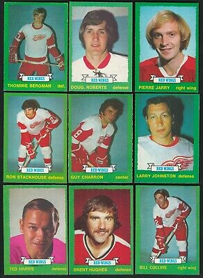 1973-74 Opc Detroit Red Wings Larry Johnston Rookie Card #251 + 8 Lot Nr-Mint