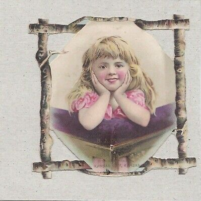 Vintage Victorian Adv Trade Card Blond Child In Pink - In Die Cut Twig Frame