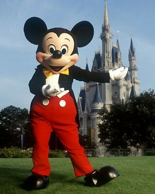 Save On 5 2-Day Disney World Tickets W/ Option Of Hopper Or 1 Day Water Park