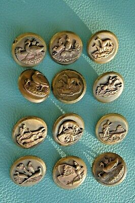 Nice Lot Of 12 Large Antique/ Victorian Metal Animal Picture Buttons