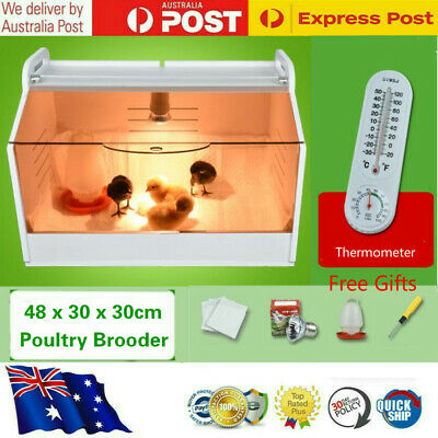Poultry Reptiles Brooder With UVB/UVA Lamp Bulb For Parrots / Birds / Chicks