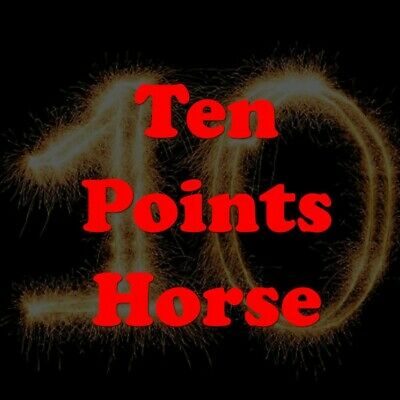 10 Points Horse - Top horse racing rating software
