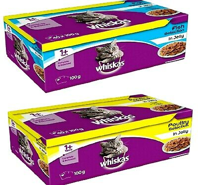 WHISKAS 1+ POUCH 100G - Adult Wet Cat Food Poultry or Fish Jelly Pouches bp Feed