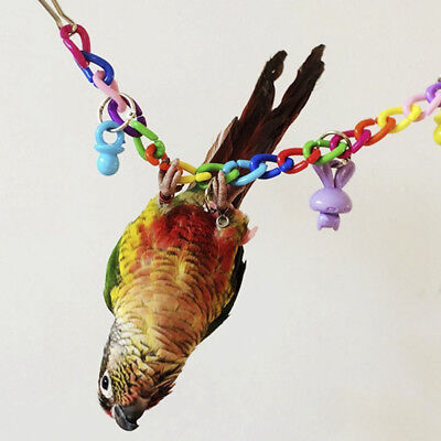 Popular Bird Toy Parrot Swing Cage Toys For Parakeet Budgie Cockatiel Lovebird