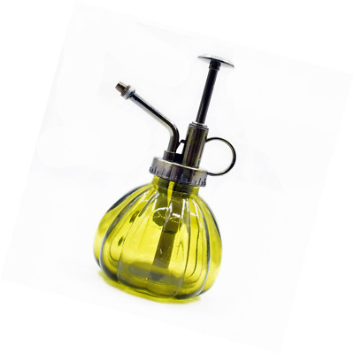 LRZCGB Glass Plant Mister, Watering Can Vintage Style Sprayer Bottle with Top Pu