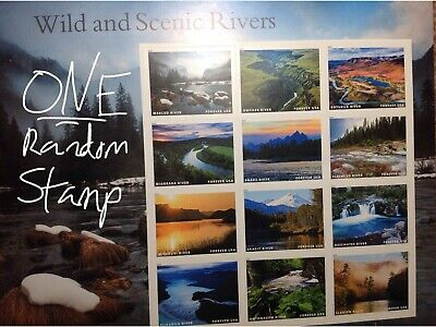 ONE RANDOM New Unused USPS Forever Postage Stamp - Wild and Scenic Rivers