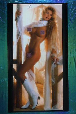 1988 Playboy Magazine Centerfold Susie Owens Promo Poster 20X36 OOP New    88SO