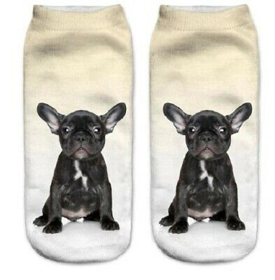 French Bull Dog Unisex Cute Gift Wrapped Trainer Socks Quality Gift Free P&P