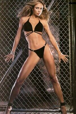 Stacy Keibler (2) 4x6 Glossy Photos