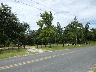 Beautiful Wooded 5 1/2 acres with 36 Foot Airstream Motorhome, Water & Electric