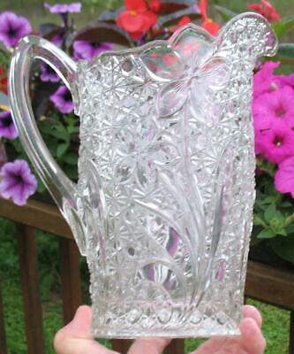 """EAPG CLEAR   """"DAISY & BUTTON with NARCISSUS FLOWER""""   LARGE WATER PITCHER"""