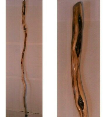 58 Diamond Willow Walking Stick Or Staff 125 Handle Diameter 15