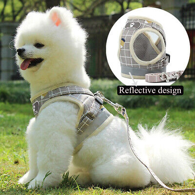 Mesh Puppy Vest Walk Leash Chest Strap Collar Pet Traction Rope Dog Harness