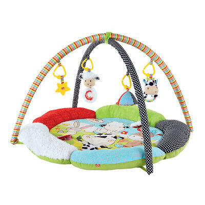 Early Learning Centre Blossom Farm Flower Activity Gym, Baby Play Mat
