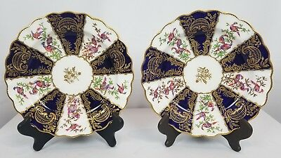 19th Century RARE Hand Painted Coalport Plates For John Mortlock Gold Encrusted