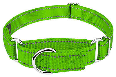 Country Brook Petz® Hot Lime Green Reflective Nylon Martingale Dog Collar-Small
