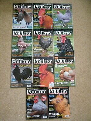 Practical Poultry magazines, 2013