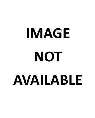 Stevie Nicks In Concert With Fleetwood Mac - 8X10 Publicity Photo (Dd654)