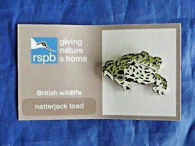RSPB GNaH natterjack toad metal pin badge on card with FR on back