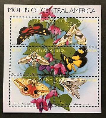 Guyana Moths Of Central America Stamp Sheet 2002 Mnh Flowers Wildlife Butterfly