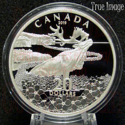 2019 - Forget-Me-Not - $20 1 OZ Pure Silver Proof Coin - Canada