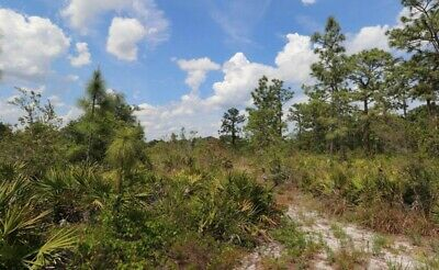 2.53 Acre Lot in Central Florida: W/ Access to a 10,000 Acre Recreational Area!