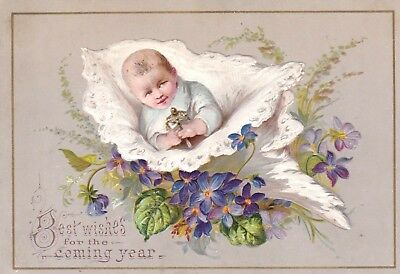 ANTIQUE 1800s NEW YEAR CARD - CHILD IN SHELL - EMBOSSED GREETING TRADE CARD