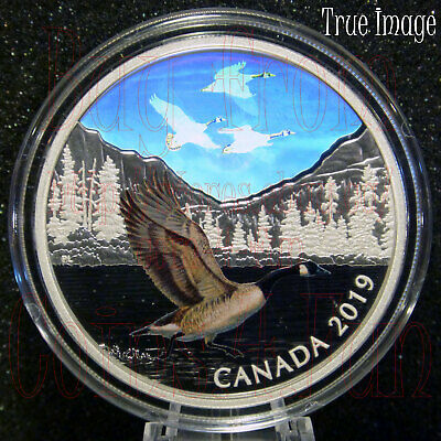 2019 Canada Geese - Majestic Birds in Motion #1 - $30 2OZ Pure Silver Proof Coin