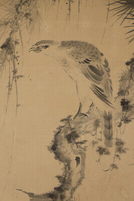 """JAPANESE HANGING SCROLL ART Painting """"Hawk"""" Asian antique  #E7855"""