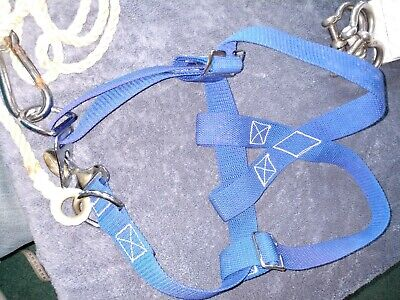 Kids Sailing Safety Harness 22 To 27 Inch Chest