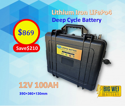Lithium Iron (LiFePO4) Deep Cycle Battery w/ case 12V 100AH & Free Charger