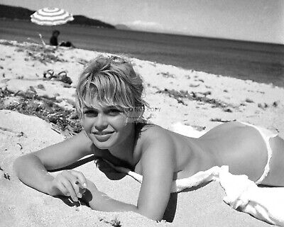 Brigitte Bardot Legendary French Actress And Sex-Symbol - 8X10 Photo (Sp113)