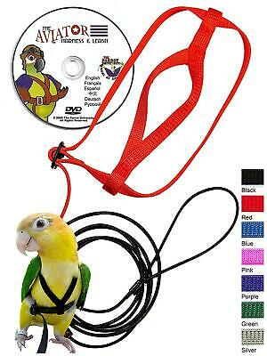 The AVIATOR Pet Bird Harness And Leash: X-Large Red Made In America