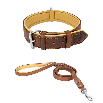 Riparo Leather Padded Dog Heavy Duty K-9 Adjustable Collar and Braided Leash Set