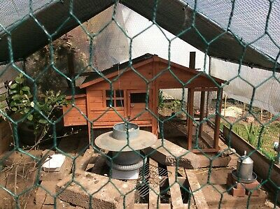 Checken coop & run hen house with galvanized metal feeder and water container .