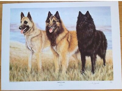 """BELGIAN SHEPHERDS- by SUE DRIVER SIGNED LTD ED 127/850- DOG """"THREE OF A KIND"""""""