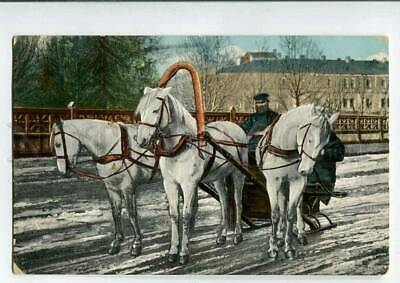 3078903 RUSSIA types Troyka HORSE carriage w/ driver Vintage PC