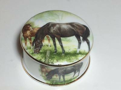 Bone china horse trinket box made in England