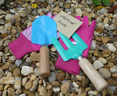 Children's Gardening Set. Trowel , Fork, Gloves , Wildflower Seeds - Present