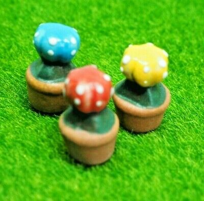 Cactus tree Garden mini ceramic clay dollhouse miniature Figurine (3pc) #174