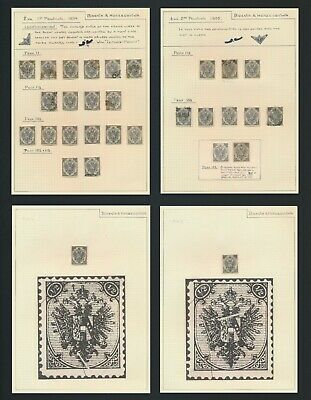 BOSNIA & HERZEGOVINA STAMPS 1894-1895 RARE STUDY OF 1/2k BOTH TYPES, 4 PAGES VF