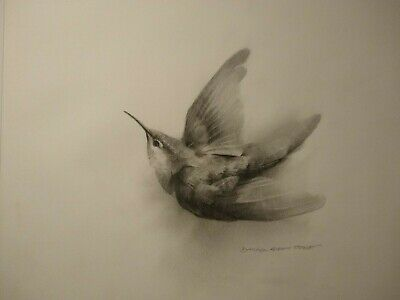 Fine Art Original Artist Signed Original Pencil Drawing Birds Birding Art