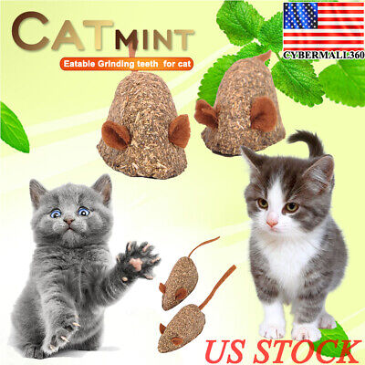US Cat Pet Natural Catnip Treat Ball Favor Home Chasing Toys Healthy Safe Edible