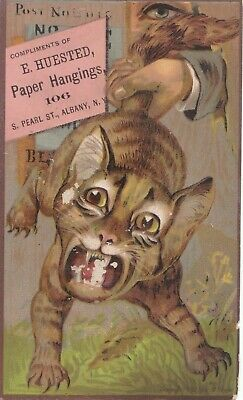 ANTIQUE 1800s WILD CAT PAPER HANGINGS VINTAGE TRADE CARD