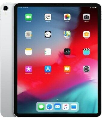 Apple iPad Pro (12.9 inch Multi-Touch) Tablet PC 512GB WiFi + Cellular Bluetooth