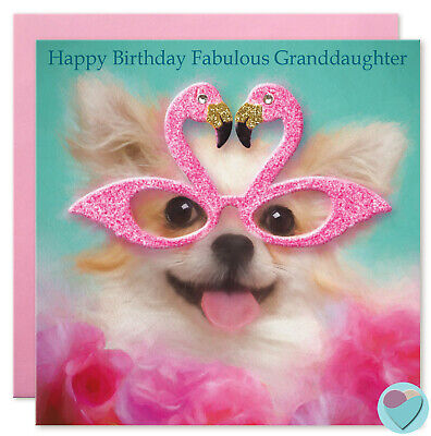 Girls birthday cards Granddaughter Sister Auntie Friend Daughter Chihuahua dog