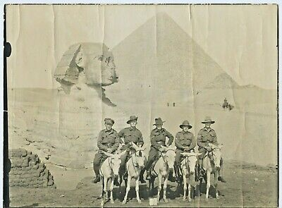 Ww1 C1915 Aif Photograph 5 Named Aussie Soldiers On Donkeys Sphinx Egypt D34.