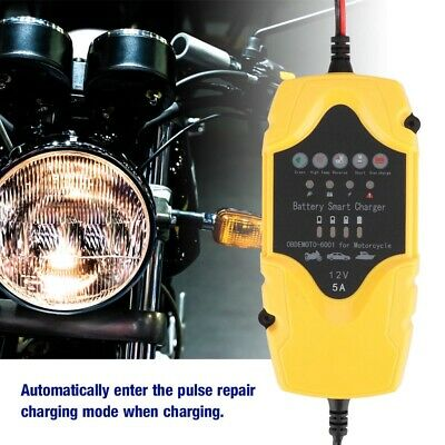 12V 5A Portable Smart Automatic Motorbike Battery Smart Charger Maintainer