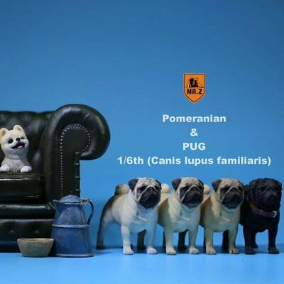 M.Z Simulation Animal Series 1/6th Pets Resin (Canis lupus familiaris) Pug Dog